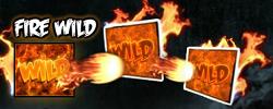 Fire Wild