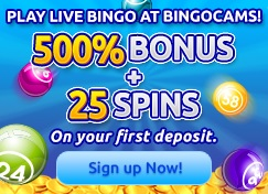 Bingocams Bingo Bonus